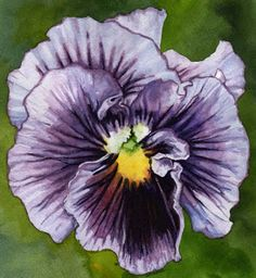 Daily Watercolors: Pansy I