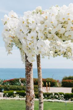 White orchid covered chuppah: http://www.stylemepretty.com/california-weddings/laguna-beach/2016/05/06/a-gold-medal-worthy-wedding-fit-for-a-five-time-olympic-champion/   Photography: John Shnack - http://www.johnschnack.com/