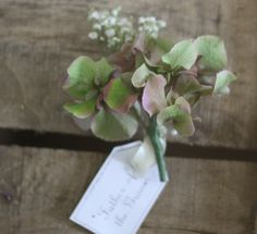vintage green hydrangea button hole by Passion for Flowers, via Flickr