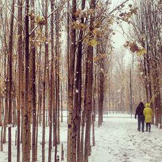 shiraz/ besat park photo by: bahar afsari زنی آهسته گفت : عشق