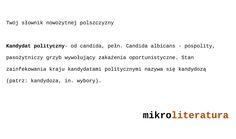 Twój słownik nowożytnej polszczyzny - kandydat polityczny #satyra #humor #polityka #językpolski
