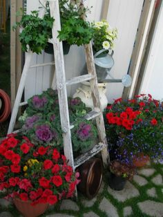 .hand painted ladder for hanging flowers in the yard..