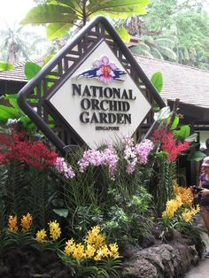After living in Singapore for several years, I finally got to visit Singapore Botanic Gardens this past weekend. Singapore Botanic Gardens, Travel Report, Visit Singapore, Orchids Garden, Botanical Gardens, Building, Buildings, Construction
