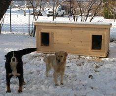 Nikki & Chaska - British Columbia:  several years of being tried and tested, this dog house has been proven to be the most comfortable and the safest home you can build for your beloved dogs.