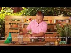 Plant Care, Garden Pots, Potted Plants, Tips, Outdoor, Gardening, Youtube, Decor, Pot Plants