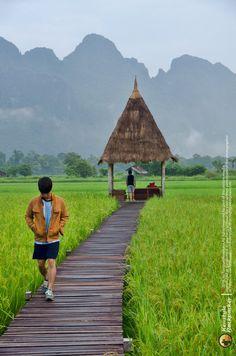 รีวิว : เวียงธาราวิลลา วังเวียง สปป.ลาว รีวิวโดย สตั๊ดดอย ร้อยเรื่องราว Cabana, Hut House, Village House Design, Forest Cottage, Bamboo House, Farm Stay, Resort Villa, Resort Style, World Of Color