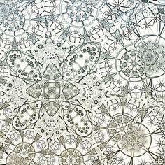 Detail #fractal #fractalart #abstract #art #contemporaryart #pattern #chaostheory #imaginaryplaces #thefractalist #beautiful #Abstractors_anonymous #artnerd2015 #artcollective #ratedmodernart #surreal42 #pinterest