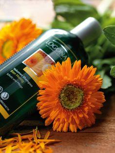 Danke, Ringelblume. Für natürliches  Volumen im Haar. LOGONA Vital-Shampoo Ringelblume. http://www.logona.de/produkte/haare/shampoo/