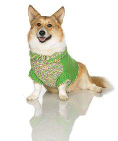 Dog Coat by Drew Emborsky, aka The Crochet Dude Crochet Animals, Knit Crochet, Knitting Patterns, Crochet Patterns, Animal Projects, Dog Coats, Corgi, Dog Outfits, Dog Clothing