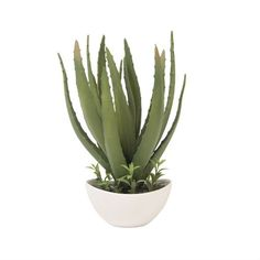 Arizona Artificial Cactus: If you want to make your desktop or window look great with a cactus but don't want to have to worry about watering or attracting greenfly then this Arizona Artificial Cactus is for you.