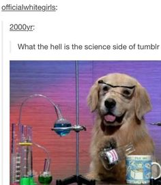 What Is The Science Side Of Tumblr