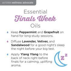 Essential Oils: Finals Week