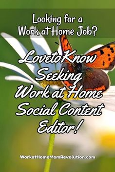 LovetoKnow is seeking a work at home social content editor. Contract home-based job paying $1,000/month base, plus a per article editing rate of $20 to $30. Flexible work from home opportunity! You can make money from home!