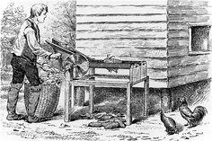 Auch die Hoden des Hahns galten als erotisierend, ebenso die Hahnenkämme. Manchmal durfte auch ein ganzer Hahn verspeist werden - aber nur ein kleiner © Kean Collection/Getty Images