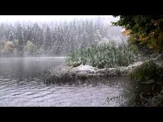 🎧 Distant Thunder Ambience & Heavy Rain Sound Against A