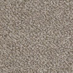 1000 Images About Carpet On Pinterest Shaw Carpet