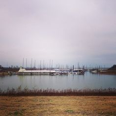 The view of the marina never gets old, even on a chilly, overcast day.  #grapevine #travel #rvpark