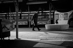 Pescheria #street #treviso #leica #photography #walking