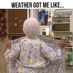 "25 Pictures Only Fans Of ""The Golden Girls"" Will Think Are Funny Hot Weather Humor, Funny Weather, Weather Memes, The Golden Girls, Golden Girls Funny, Psycho Ex, Hate Summer, Summer Time, Summer Heat"