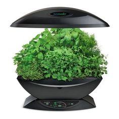 Miracle-Gro AeroGarden Indoor Garden with Gourmet Herb Seed Kit, White