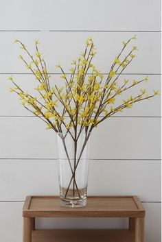 Buy Set of 3 Artificial Forsythia Stems from the Next UK online shop Artificial Flowers And Plants, Fake Plants, Hanging Plants, Yellow Plants, Shops, Trends, Salvia, Next Uk, Uk Online