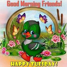 Tuesday Good Morning Quotes Images Pics for Whatsapp Good Morning Tuesday Images, Happy Tuesday Morning, Happy Tuesday Quotes, Good Morning Images Download, Good Morning Picture, Good Morning Friends, Good Morning Good Night, Good Morning Wishes, Morning Blessings