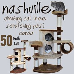 The Nashville Climbing Cat Tree Scratching Post Condo available in a brown and beige combined color scheme, created by Kitty Mansions has a condo with bunk type rooms one on top of the other, and is made from three fourth of an inch thick plaster board covered with thick plush fabric. Quality construction gives this exceptional cat climbing tree more durability and much longer floor life than any of the other cat tree condos in the same quality, class and price range.  Price: $99.00