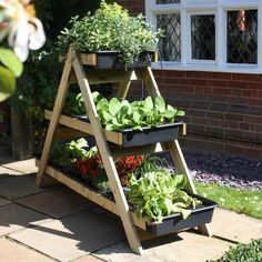 The Maxi A-Frame Vegetable Garden is a perfect solution for growing a wide range of vegetables, salad and herbs on the patio or decking.
