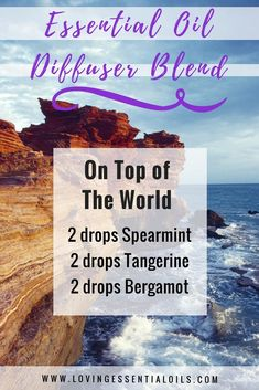 Essential Oil Diffuser Blends | On Top Of The World: 2 drops Spearmint, 2 drops Tangerine, 2 drops Bergamot | Loving Essential Oils