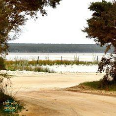 Bremer Bay  #Travelling #Australia #roadtrip #caravanning #sceanic #scenery #redcentre #naturalbeauty #naturesbeauty #Australiana #wondersofnature #bremerbay Red Centre, Travel Sights, Natural Wonders, Natural Beauty, Travelling, Road Trip, Scenery, Country Roads, Australia