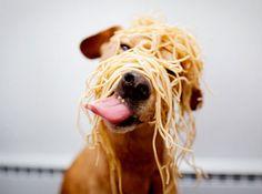 what pasta???