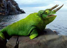 Photoshopped Animal Hybrids | Photoshopped Animals Chameleon and Walrus Three-horned Chamalrus