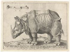 Rhinoceros   Neushoorn, Enea Vico, Albrecht Dürer, Antonio Salamanca, 1542