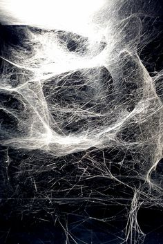 Hybrid solitary... semi-social quintet... on cosmic webs...