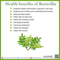 #Health benefits of #Boswellia #Ayurveda #SandhuProducts #Livermore www.sandhuproducts.com