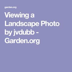 Viewing a Landscape Photo by jvdubb - Garden.org