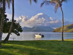 Turtle Beach. Beautiful St. Kitts. Picture by Ricky Pereira.