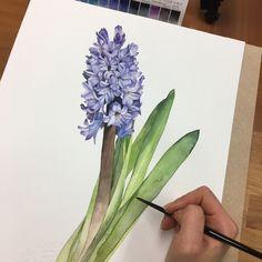 Watercolorist: @anns_class #waterblog #акварель #aquarelle #drawing #art #artist #artwork #painting #illustration #watercolor #aquarela