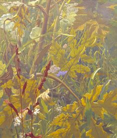 Eliot Hodgkin, 'Undergrowth' 1941