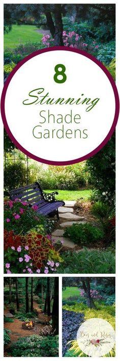Shade Gardens, How to Grow a Shade Garden, Shade Garden Ideas, Landscaping Ideas, Backyard Landscaping, Backyard Landscaping Ideas, Backyard Gardening TIps and Tricks, Popular
