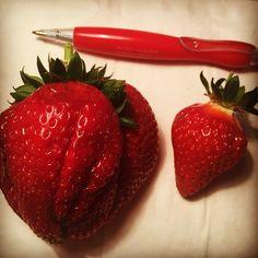Habt ihr schon mal so eine riesige Erdbeere gesehen?