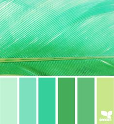 Color Palettes: feathered hues by Design Seeds Scheme Color, Colour Pallette, Colour Schemes, Color Combos, Color Patterns, Design Seeds, World Of Color, Color Stories, Color Swatches