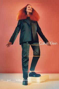 Grace Coddington: I purr in #mycalvins - Kate Moss, Grace Coddington en Bella Hadid in #TheirCalvins: dit zijn de 'nieuwe' gezichten van Calvin Klein