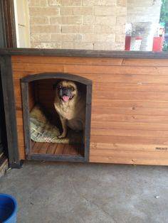 Ac dog house interior | Air Conditioned Dog Houses | Pinterest ...