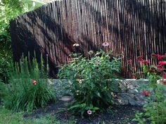 Backyard X-Scapes 1 in. D x 6 ft. H x 8 ft. L Stained Mahogany Rolled Bamboo Fence HDD-BF20 at The Home Depot - Mobile