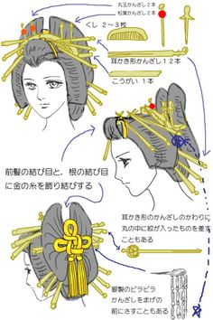 "Nihongami: Oiran/Taiyu hairstyle structure, by Penta Like many Japanese traditional hairstyles, Oiran's trademark ""butterfly"" hairdo (named hyogo) can be deconstruct in 4 parts: • Green: maegami, the..."