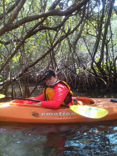 A beautiful day paddling the mangroves with my son and Sweetwater Kayaks.
