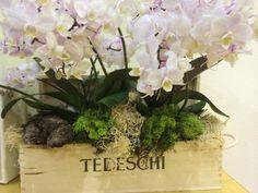 Flowers at Vinitaly