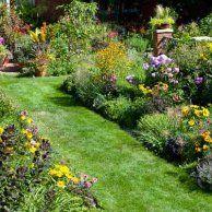 1. Keep Plants Hydrated