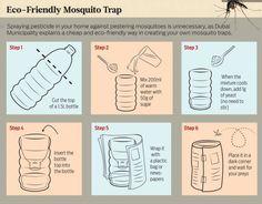 Eco-Friendly Mosquito Trap